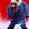 Business Panda